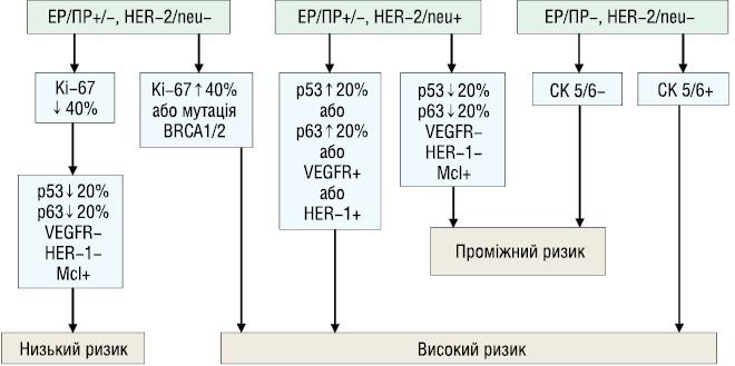 Молекулярно біологічні принципи індивідуалізації лікування хворих на рак грудної залози молодого віку