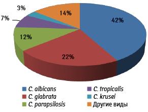 Инвазивные микозы вгематологии. Современные стандарты диагностики илечения