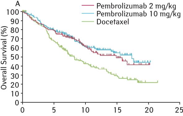 567 9 Современные подходы клечению пациентов снеоперабельным немелкоклеточным раком легкого