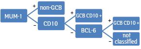 Імуногістохімічна експресія с MYC залежно від підтипу дифузної В великоклітинної лімфоми